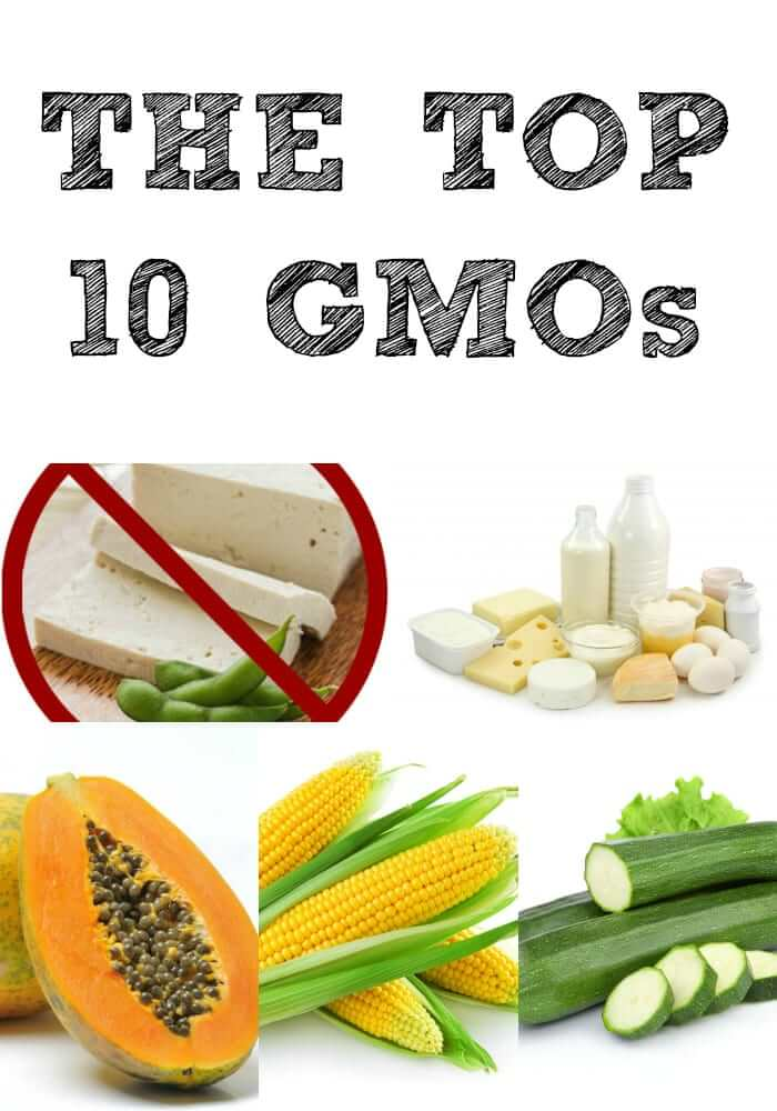 Genetically modified foods are dangerous and scare me to death! Make a note of the top 10 genetically modified foods and do your best to avoid them!