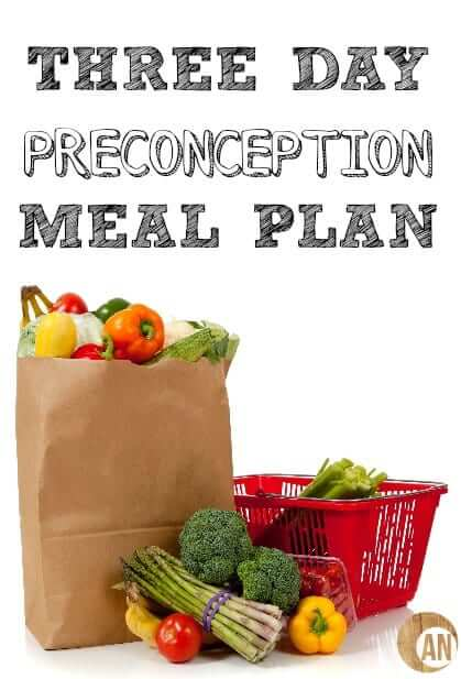 Three-Day-Preconception-Meal-Plan