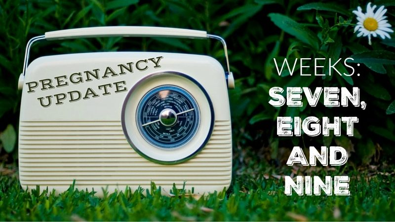 Pregnancy Update Weeks Seven, Eight and Nine