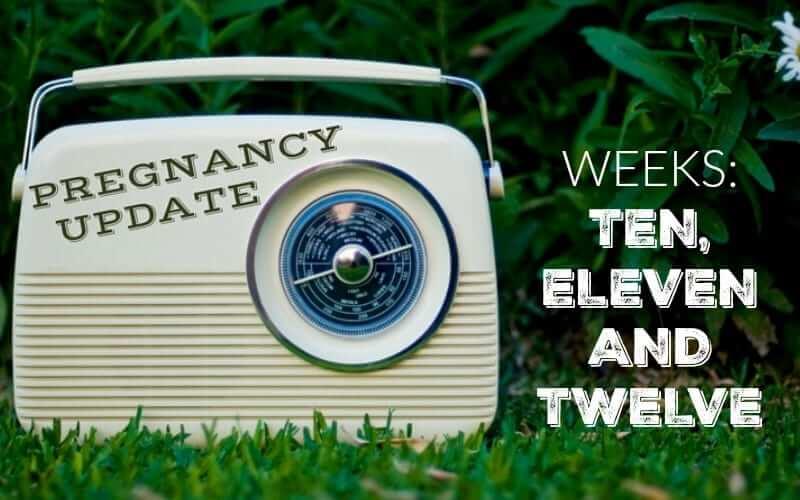 Pregnancy Update Weeks Ten, Eleven and Twelve