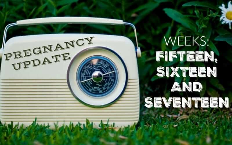 Pregnancy Update Weeks Fifteen, Sixteen and Seventeen