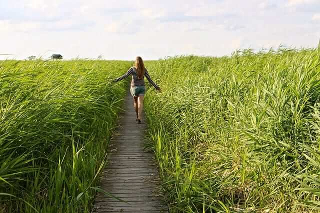a girl walking on a trail touching the tall grass left and right
